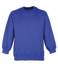 Maddins Kids Coloursure™ curved raglan sweatshirt