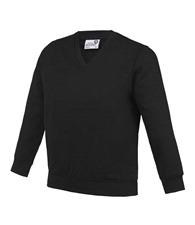 AWDis Academy Kids Academy v-neck sweatshirt